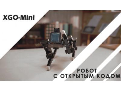 Перспективная разработка: Робот XGO-Mini с ИИ
